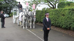 Melissa with white horses and carriage